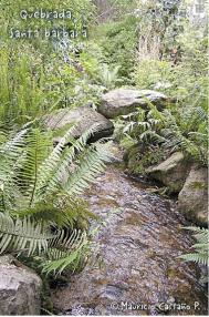Quebrada Santa Bárbara