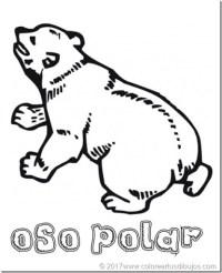 Oso polar Dibujos para colorear y pintar - colorear tus ...