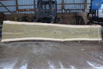 "082  - 4 Poplar 2 1/2"" x 40 - 28"" Wide x 16' Long  Kiln dried"
