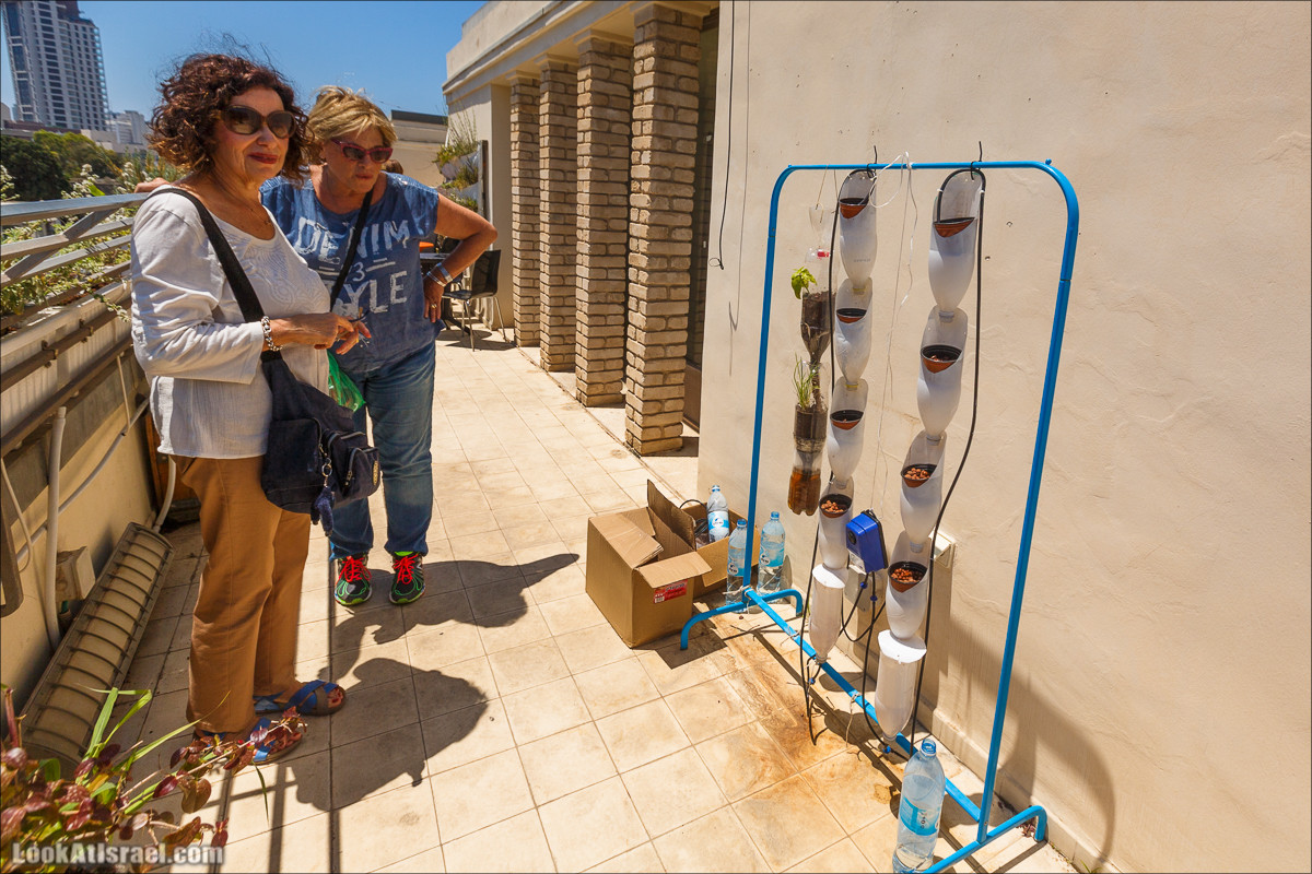 Дома изнутри - Дом тель-авивской молодежи Мазе 9 | Houses from within - Maze 9 | בתים מבפנים מזא 9 |  LookAtIsrael.com - Фото путешествия по Израилю