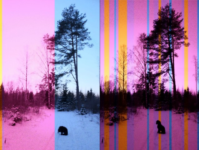 Valokuvan värit ovat pahasti pielessä pakkasen takia