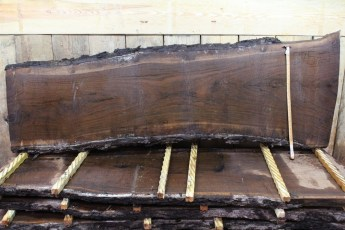 Walnut 375-2  Length 8', Max Width (inches) 34 Min Width (inches) 24 Thickness 10/4  Notes :