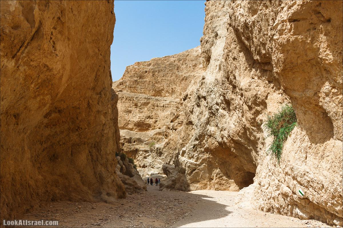 Путешествие на джипах по Иудейской пустыне к монастырю Мар Саба | Jeep trip to Mar Saba monastery | LookAtIsrael.com - Фото путешествия по Израилю