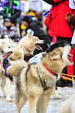 Iditarod2015_0139.JPG