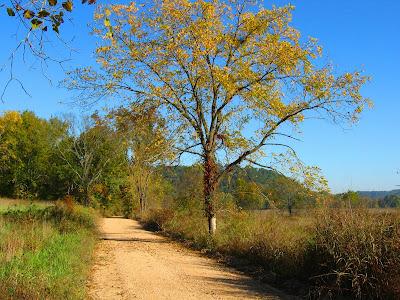 Country roads near Rock Eddy
