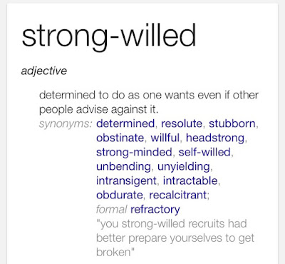 """Embracing Our """"Strong Willed"""" Children by Living in Mommywood"""