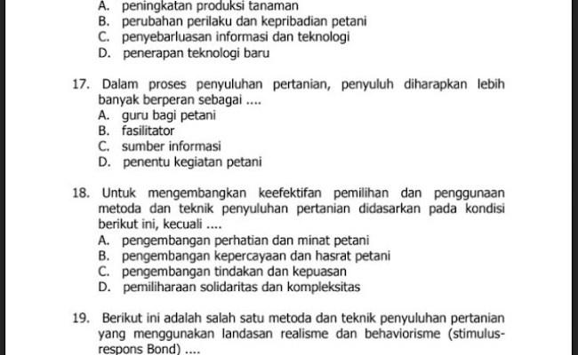 Contoh Soal Dan Kunci Jawaban Seleksi Pppk Guru Honorer Tahun 2021 Cute766