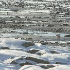 0232_Kanada_15-Nov-11_Limberg.jpg