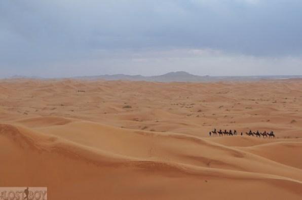 sahara desert-27