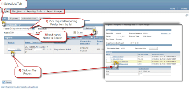 Report Manager View
