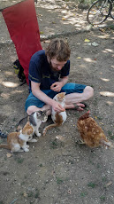 Simon's new family... including another brave chicken
