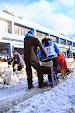 Iditarod2015_0229.JPG