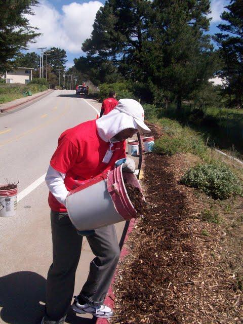 IVLP 2010 - Volunteer Work at Presidio Trust - 100_1421.JPG