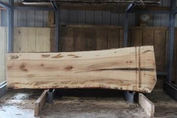 "576  Ambrosia Maple -5 10/4x 41"" x 32"" Wide x  10'  Long"