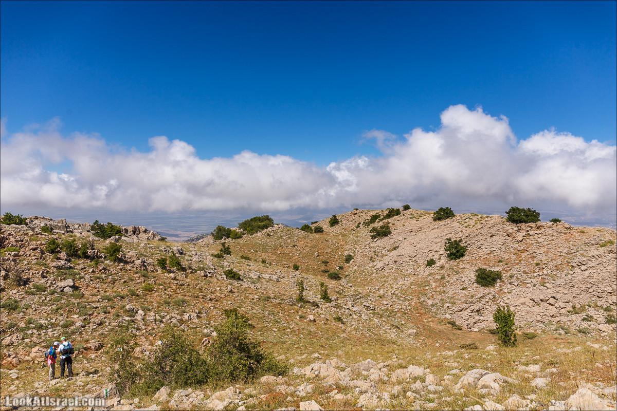 Пеший подъём на гору Хермон, самую высокую точку Израиля | Hiking on mount Hermon, highest point of Israel | LookAtIsrael.com - Фото путешествия по Израилю
