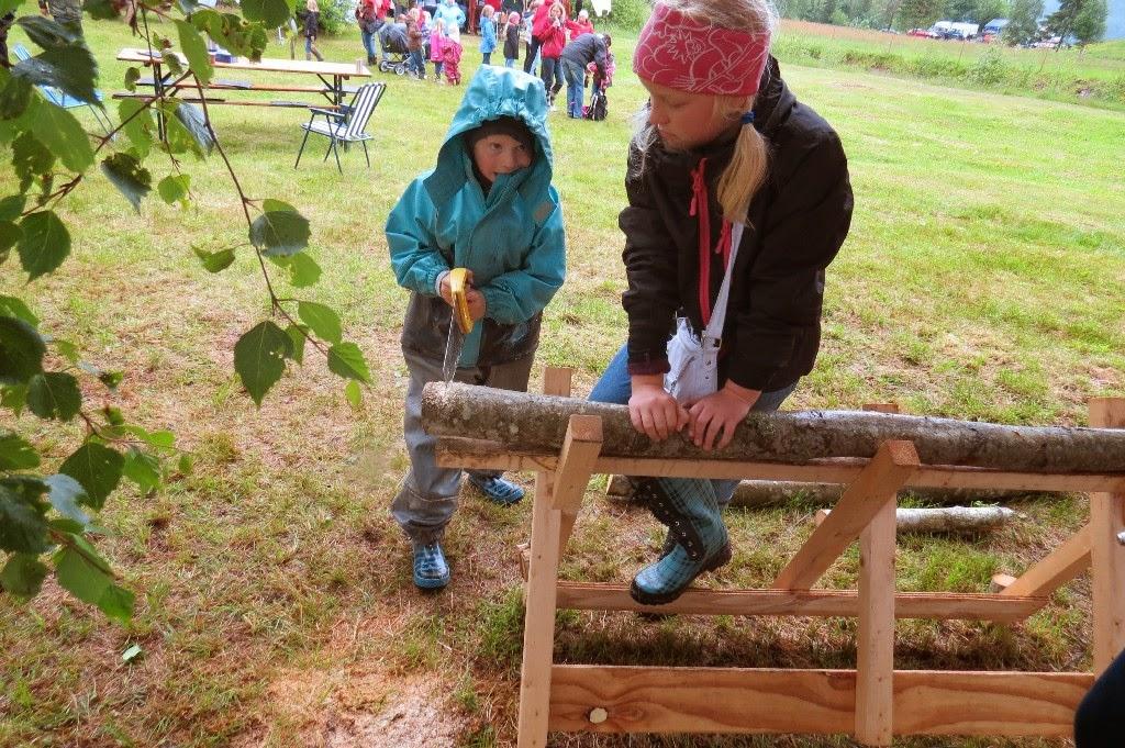 Kosidba u Norveskoj- Turisticka organizacija opštine Ljig228