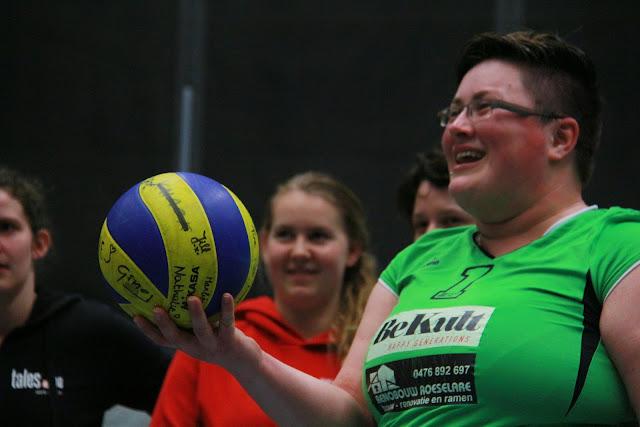 gesigneerde Volleybal