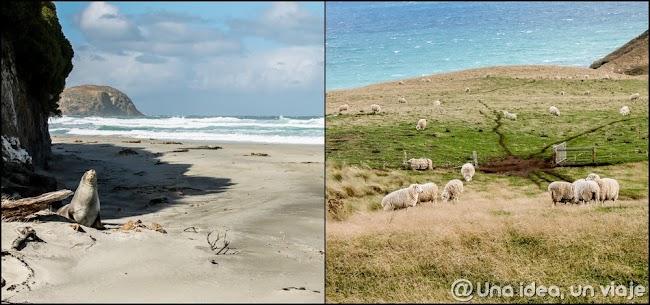 nueva-zelanda-ruta-itineriario-20-dias-unaideaunviaje.com-025.jpg
