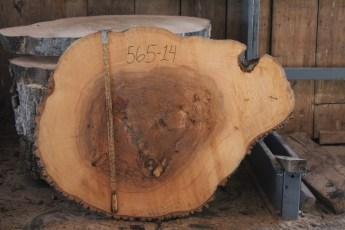 """565 Ash -14 4"""" x 52"""" x 39"""" Wide"""