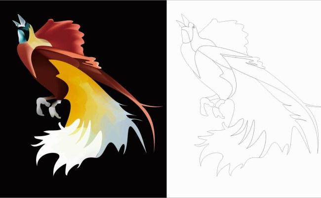 Cara Cepat Membuat Lukisan Burung Cendrawasih Di Coreldraw Dengan Mudah Dan Cepat Resep Kuini