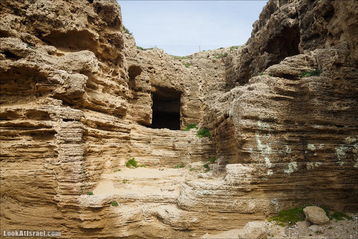 Вокруг да около Пальмахим | LookAtIsrael.com - Фото путешествия по Израилю
