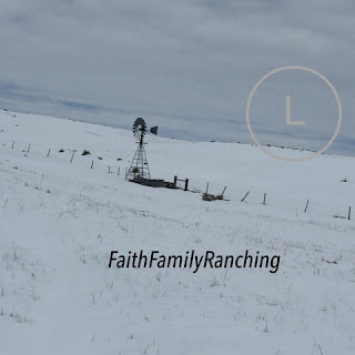 Windmill, Nebraska Snow, Ranch Life