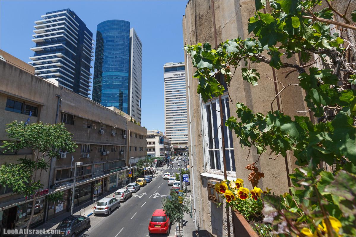 Дома изнутри - Квартира Разруха в Тель Авиве | Houses from within Tel Aviv - Disintegration | בתים מבפנים - התפוררות | LookAtIsrael.com - Фото путешествия по Израилю