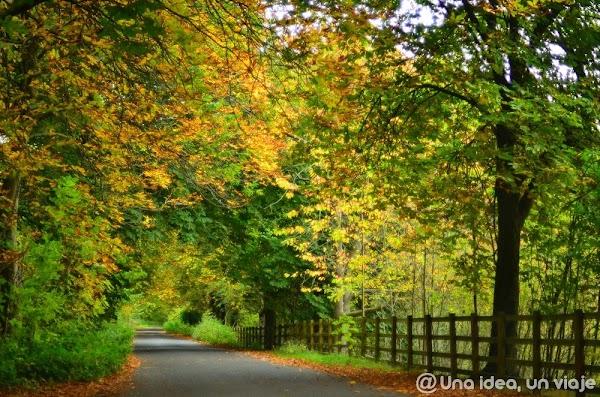 inglaterra-uk-roadtrip-ruta-4-dias-yorkshire-unaideaunviaje.com-33.jpg