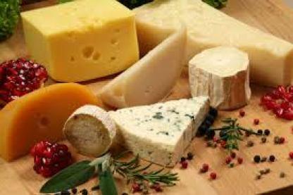 Можно ли щенку сыр