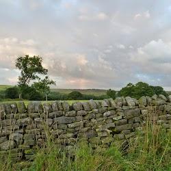 5-Landscape-10-Satguru_Sirio_Ji-2014_Yorkshire.jpg