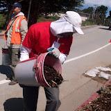 IVLP 2010 - Volunteer Work at Presidio Trust - 100_1423.JPG