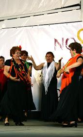 DistritoSur_2008MayoBaja113.jpg