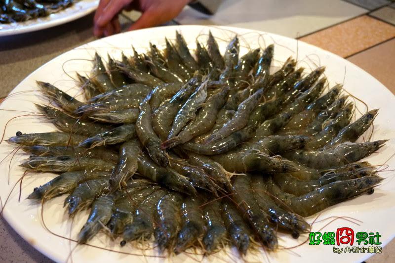 超大盤又多的蝦子,阿新在好蝦冏男社
