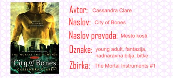 Mesto kosti (na hitro o knjigi)