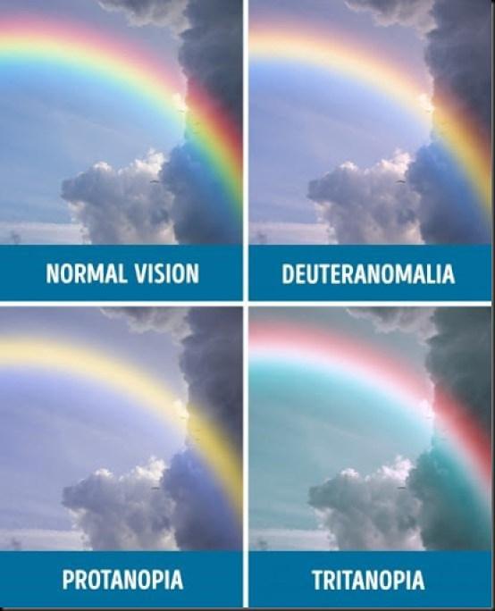 gambar tes penglihatan mata normal dan buta warna