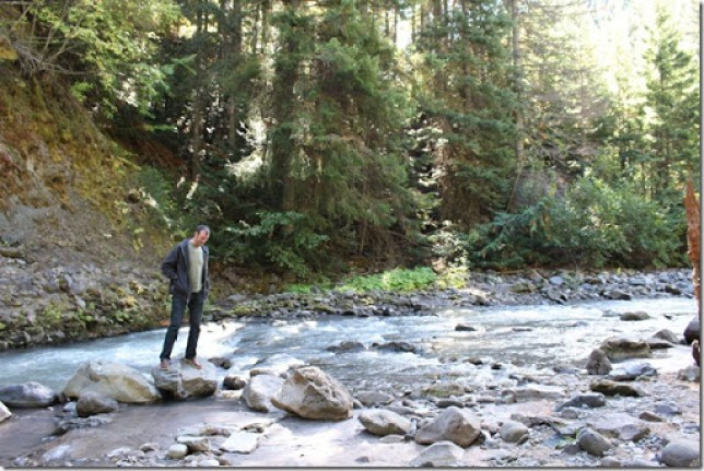 Domesticability Oregon Trip Mt. St Helens Haystack Rock Tidepools_-149