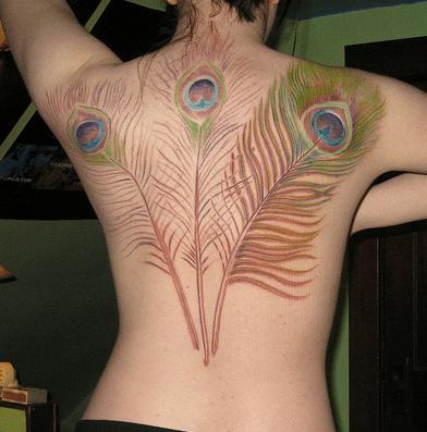 Peacock Tattoos