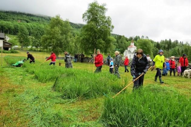 Kosidba u Norveskoj- Turisticka organizacija opštine Ljig175