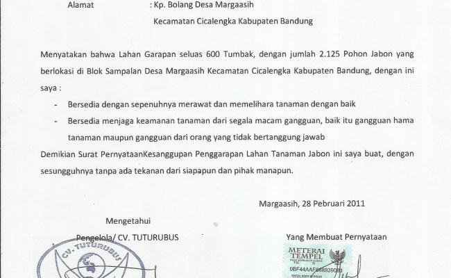 Pernyataan Kesanggupan Membayar Hutang Contoh Surat Perjanjian Hutang Piutang Diatas Materai Nusagates