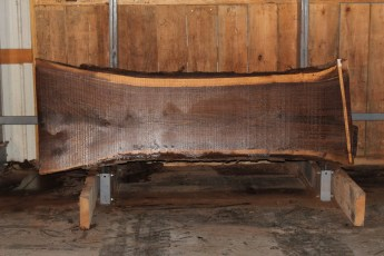 "554  Walnut -4 10/4 x  35"" x  26"" Wide x 8'  Long"