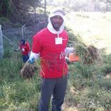 IVLP 2010 - Volunteer Work at Presidio Trust - 100_1409.JPG