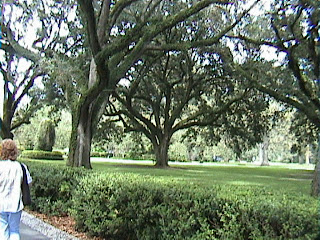 1020A_Southern_Mansion_Garden_-_New_Orleans