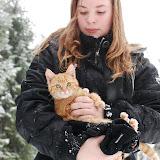 En kattunge och Sofia