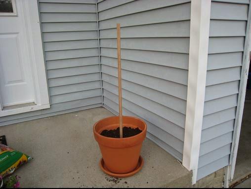 Cómo hacer una columna con macetas, plantas y flores.