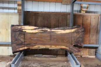 "566  Walnut -9 10/4 x  35"" x  24"" Wide x  8'  Long"