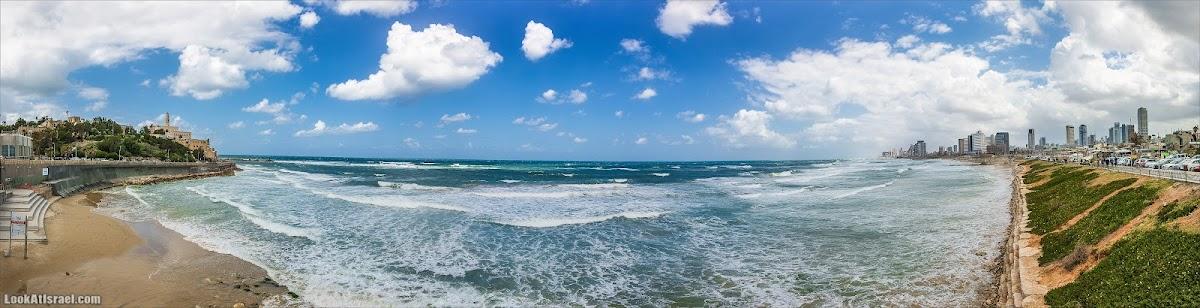 Меж двух портов - тель-авивская лагуна