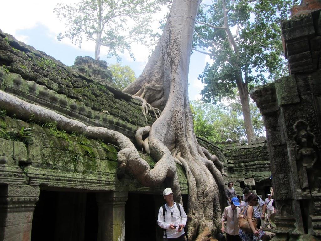 0116Angkor_Wat