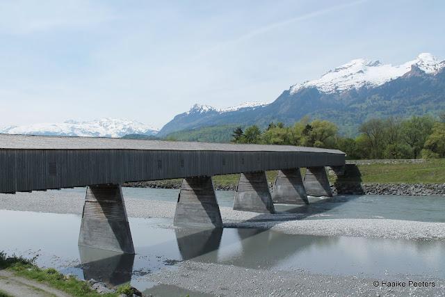 Rheinbrücke (Le petit requin)