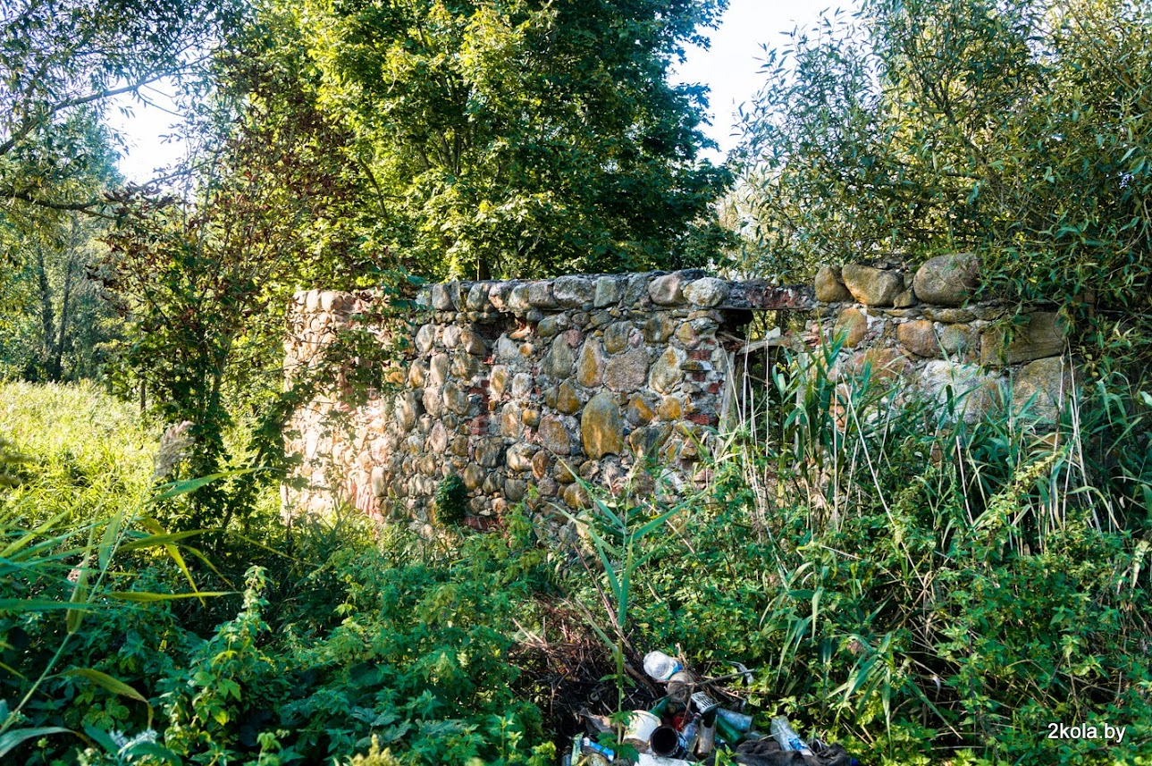 Руины водяной мельницы в д. Лопушно