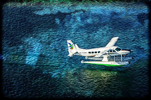 amphibian, #seaplane #wipaire